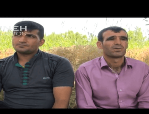 The world of recovery in Aligoudarz, in Lorestan – Iran , Part 2